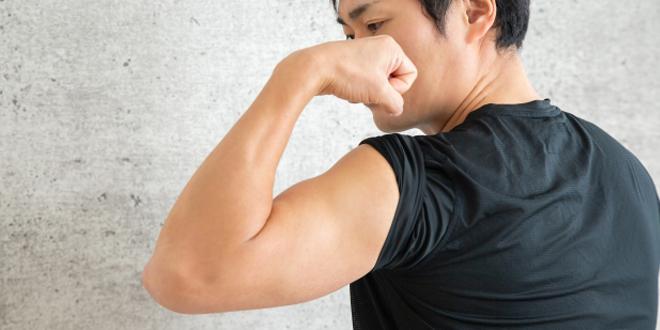 三角筋の効率的な鍛え方は?頼りがいのある肩を作る為のトレーニング